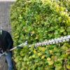 EGO - AKU Nástavec s nůžkami na živý plot, dlouhý HTA2000