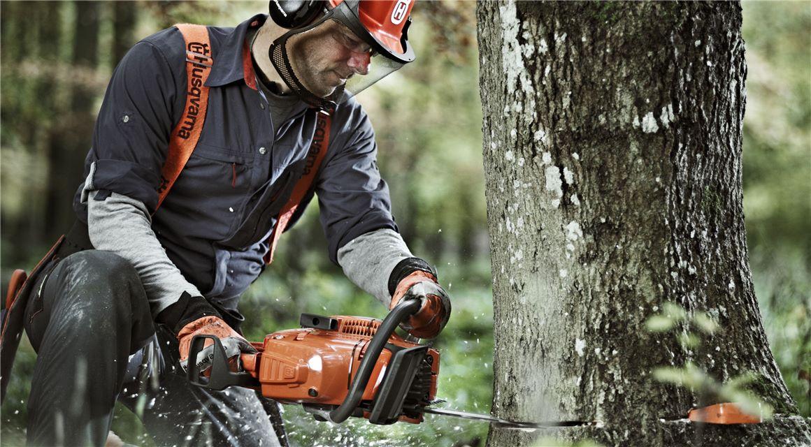Husqvarna - 6 kroků pro úspěšné kácení stromů